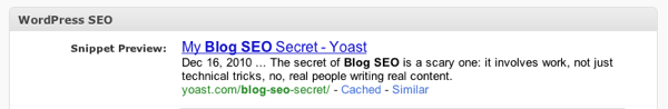 snippet preview of Blog SEO Secret