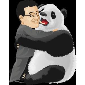 Yoast liked the Panda