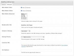 WordPress SEO plugin meta box - advanced tab