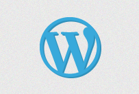 WooThemes chooses WordPress SEO