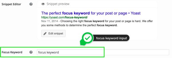 a focus keyword shown in its input field