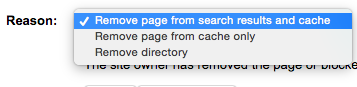 Webmaster_Tools_-_Remove_URLs