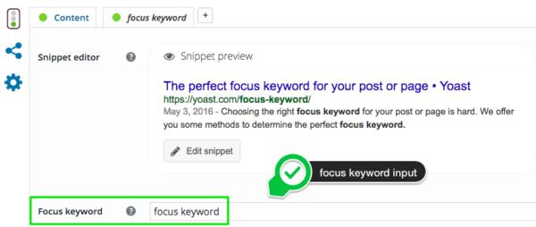 focus keyword input field