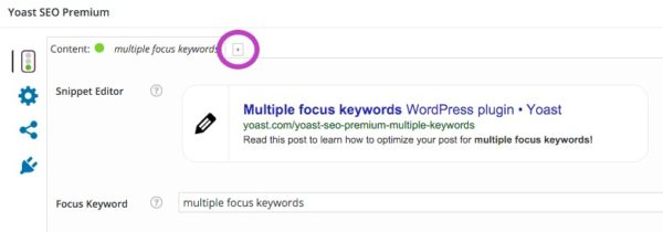 multiple focus keywords: click plus sign to add a focus keyword