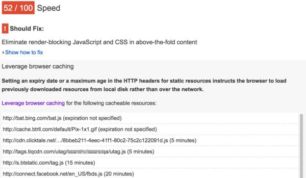 Browser caching: pagespeed insights screenshot